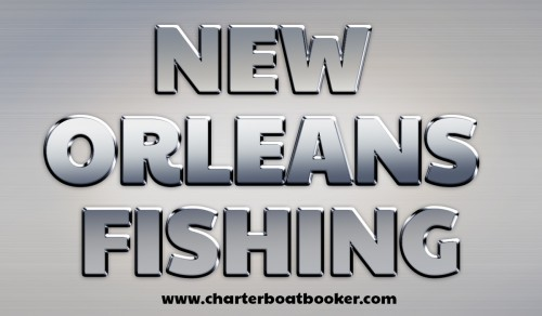 Look at this web-site https://www.charterboatbooker.com/location/united-states/louisiana/new-orleans-fishing-charters/ for more information on New Orleans Fishing. This is a fairly straightforward task which can be accomplished easily and politely. Professional New Orleans Fishing charter captains are almost always happy to boast about the health and longevity of their charter business. The trick is to speak directly with the captain and not a booking service or administrative office. Most fishing charters are run by the operator of the boat, but it's also common to find an office answering the phone and making the reservations. Once you're able to get the captain on the phone, first of all, be polite. Follow us https://plus.google.com/communities/117226594427863296189 https://sites.google.com/site/clearwaterdeepseafishing/ http://gulfshoresfishingguide.weebly.com/ https://plus.google.com/communities/112837829970053541048 https://sites.google.com/site/gulfshorescharterboats/