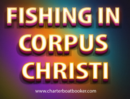 Look at this web-site https://www.charterboatbooker.com/location/united-states/texas/corpus-christi-fishing-charters/ for more information on Fishing In Corpus Christi. Fishing offers a thrilling fishing experience for everyone. Here you can fish in some of the most exotic waters where you can catch some really 'big fish. Many fishing charters in Corpus Christi offer prime opportunity for thrilling fishing for anglers from all over the world. Those coming here for sport fishing hire fishing charters and guides because they can enjoy the best fishing experience when using a charter service. Most people prefer to Corpus Christi fishing; however, some of them may have interest in catching other types of fish species as well, such as lingcod and snapper. Follow us https://sites.google.com/site/gulfshoresoffshorefishing/ http://gulfshorescharterboats.dudaone.com/ http://perdidokeydeepseafishing.snack.ws/ https://sites.google.com/site/gulfshoresfishingtrip/