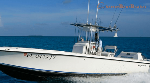 There are many professional guides and captains in Key West Fishing charters, and tackle that one can take advantage of in order to catch that monster. These guides and captains know exactly where the fish are and this will most assuredly increase your chances on landing the big one. There are basic area's that are broken down and consist of Key West fishing locations. There are fishing charters in each and every one of them too. Browse this site https://www.charterboatbooker.com/location/united-states/florida/key-west-fishing-charters/ for more information on Key West Fishing. follow us : https://goo.gl/mFjhw9
