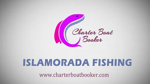 Look at this web-site https://www.charterboatbooker.com/location/united-states/florida/islamorada-fishing-charters/ for more information on Islamorada Fishing. They offer a unique, lifetime experience that no one can ever forget. Islamorada Fishing Charters trips can take vacationer across to exciting water regions where they will find the best catch. Sport fishing enables avid fisher to enjoy a thrilling experience in catching some of the most exotic of fish varieties. However, most people are not completely experienced in water regions that are abundant in fish and this is where hiring a fishing charter can make a difference. Follow us http://destincharterfishing.yolasite.com/
