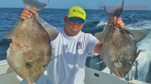 Most especially when it comes to Miami Deep Sea Fishing, the most sought after option these days it the utilization of a fishing charter. This is definitely a good way for you to enjoy and experience fishing at its best while providing you with the essential services and equipment necessary for a particular fishing activity. It is always good to choose a inshore fishing guide that can fish multiple locations in the area and trailer his vessel to fair weather areas. If they do not fish out of multiple locations then you're at risk of missing out on your scheduled date. Check this link right here https://www.charterboatbooker.com/location/united-states/florida/miami-fishing-charters/ for more information on Miami Deep Sea Fishing.Follow us: https://goo.gl/rMQSb4 https://goo.gl/kJHDb5 https://goo.gl/87yxjH https://goo.gl/YK3Lk1 https://goo.gl/rl7yTd