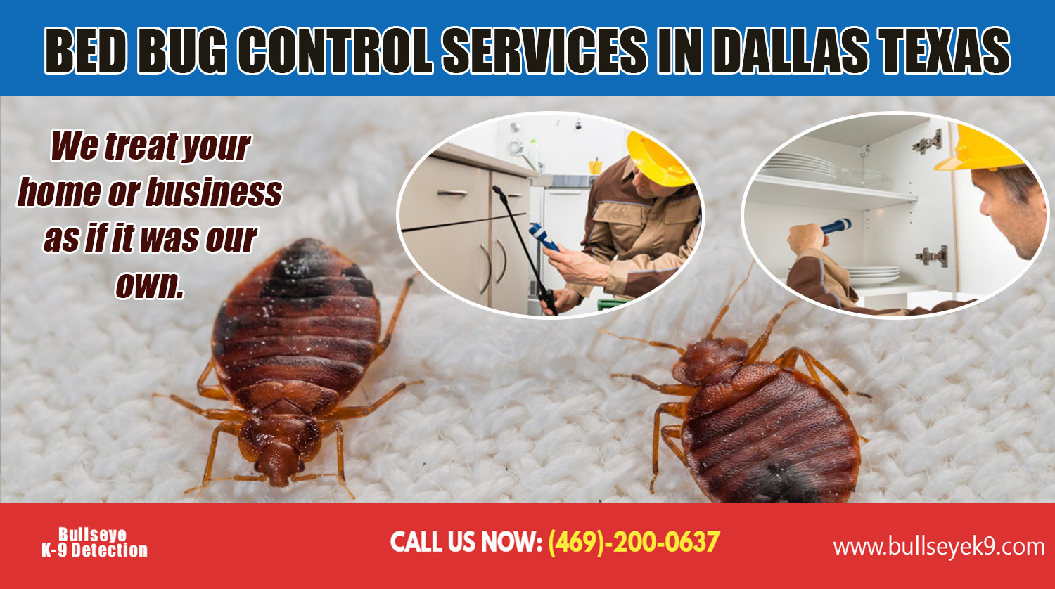 Bed Bug Control Services In Dallas Texas Imgpaste Net